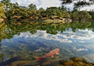 japan-2038902_1920